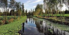 Xochimilco. Patrimonio de la Humanidad, Xochimilco te invita a disfrutar de un increíble recorrido por sus canales, a bordo de una trajinera, para evocar aquellos tiempos en que el ambiente lacustre dominaba el paisaje del Anáhuac.