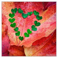 Love this green heart made of green hearts...
