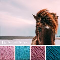 'Seaside Pony' color palette features HIGHLAND yarn in Water Lily, Aegean, Aster and Peacock.