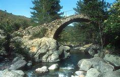 Genoan bridge over the Tartagine photo | Tartagine Melaja forest | France in Photos
