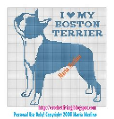 Boston Terrier Chart