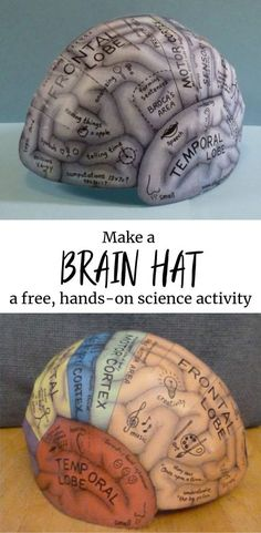 """Penny Cleaning Science Experiment: What Cleans Pennies Best? Brain Hemisphere Hat This is the """"world-famous"""" Brain Hat. This humble little hat has been distributed around the world (even at some famous science museums) and has been translated in… Kid Science, Brain Science, Science Lessons, Teaching Science, Science Education, Science Fair, Kids Education, Science Experiments, Weather Science"""