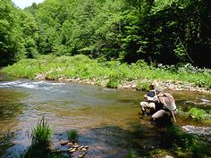 Slate Run has become one of the most well-known freestone trout streams in the eastern United States. Enjoy #springPA during a fishing trip to the Pennsylvania Wilds!