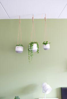 intratuin hangpotten #hangplanten #planten #plantlovers #groeninhuis #iloveplants #plantsofinstagram #plantstagram #indoorplants #plantlove