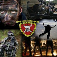 Marines 3rd Recon Bn.... My dad was a 3rd Recon Marine 68-69 Bravo Co.