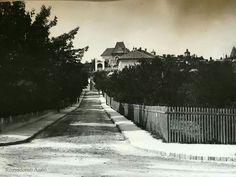 1900 körül. Levél utca a Zárda (Rómer Flóris) utcáról nézve. Szemben Alpár Ignác villája, ami ma  Budai Gyermekkórház része.
