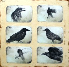 Notes on Crows II - ink drawing and encaustic painting