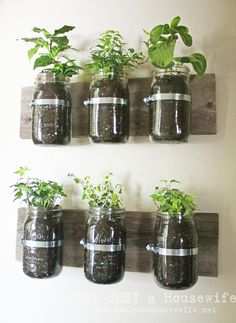 Wall Planters | 41 Easy Things To Do With Mason Jars