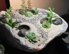 Mini jardines on pinterest fairies garden mini gardens for Jardin japonais miniature