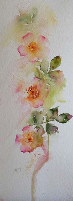 like the shape and washed out look? Watercolours With Life: Wild Roses by Jean Haines Watercolor Rose, Abstract Watercolor, Watercolour Painting, Watercolor And Ink, Watercolours, Painting & Drawing, Watercolor Projects, Art Paintings, Flower Art