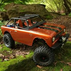 RC International Scout