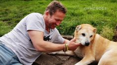 Reuniting soldiers with dogs they left behind. #dogs #military