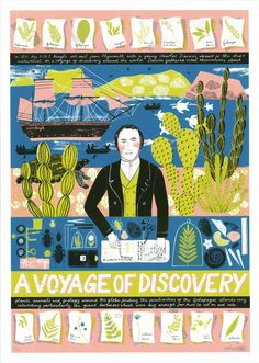 'A Voyage of Discovery' by Alice Pattullo, an exclusive print for Eastern Biological illustrating the work of a young Charles Darwin on the HMS Beagle voyage.