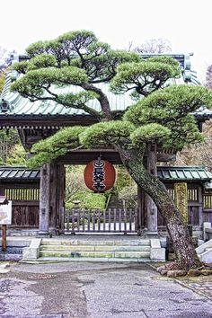 Hasedera Temple Gate, Kamakura - www.2AussieTravellers.com