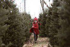 Child Photography, Christmas, Holidays, ©Misty Exnicios