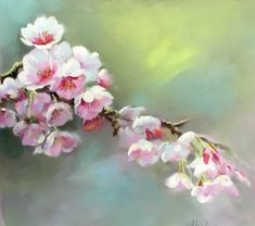 Calm , paintings of blossom, apple blossom The Simple Things II www.nelwhatmore.com