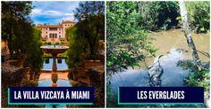 Top 10 des trucs incontournables à voir en Floride, pour faire ami-ami avec Miami