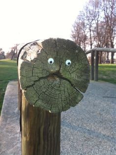 We need to go EyeBombing!!!!! the act of placing googly eyes on inanimate things in public space to humanize the streets and bring sunshine to people's day.