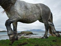 Scottish Island Photo Gallery -- National Geographic Traveler