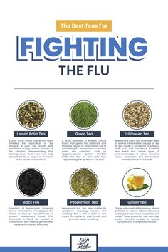 The Best Teas For Fighting the Flu Flu season hits fast and hard. Fortunately, there are natural remedies that can help you beat the flu. Among these herbal remedies, tea is a delicious option for treating and even preventing some… Continue Reading → Natural Cold Remedies, Cold Home Remedies, Herbal Remedies, Sore Throat Remedies, Allergy Remedies, Flu Remedies, Sleep Remedies, Natural Medicine, Herbal Medicine