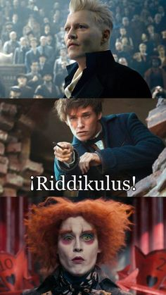 Here are some of the freshest Harry Potter memes and pictures from different series of Harry Potter movies. For all Potterheads enjoy this list of memes by Swishtoday. Harry Potter Tumblr, Harry Potter World, Images Harry Potter, Mundo Harry Potter, Harry Potter Puns, Harry Potter Cast, Harry Potter Universal, Harry Potter Characters, Harry Potter Crossover