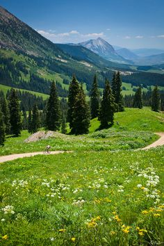 Rocky Mountains near Crested Butte, Colorado. Nat Coalson