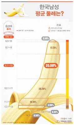 한국남성 평균 성기 둘레 9~10cm, 보통 생각하는 것과 차이 있어…[인포그래픽] #sex #Infographic ⓒ 비주얼다이브 무단 복사·전재·재배포
