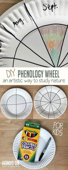 Combine nature and art with a super fun and easy artistic nature study. Learn how to make a DIY phenology wheel for preschoolers with a simple tutorial!