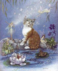 Fairies & Kitten