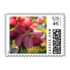 Pink Crab Apple Tree Flower Postage http://www.zazzle.com/pink_crab_apple_tree_flower_postage-172576879936466800?rf=238412905592140161