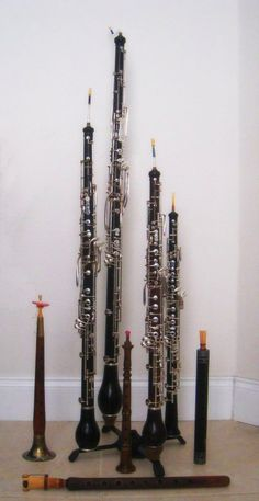 English Horn, Bass Oboe, Oboe D'Amore, Oboe along with early double reed instruments.