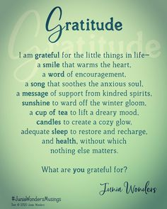 What are you grateful for? Have a meaningful Thanksgiving. #thanksgiving #gratitude #gratitudequotes #gratitudechallenge #thankful #thankfulness #juniawonders #juniawondersmusings Thank You Messages Gratitude, Gratitude Quotes, I Am Grateful, Thankful, Kindred Spirits, Words Of Encouragement, Anxious, Reflection, Thanksgiving