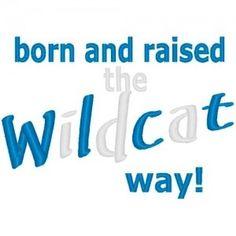 Raised the Wildcat Way!