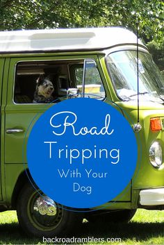 I think dogs make the best road trip companions. They're certainly not backseat drivers. These tips will help you keep your dog safe and happy on the road.: