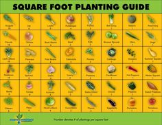 Square foot gardening printable & quadratmeter gartenarbeit bedruckbar & jardinage pied carré imprimable & pie cuadrado jardinería imprimible & square foot gardening layout, square foot gardening for beginners, square foot gardening plans, square foot Veg Garden, Edible Garden, Vegetable Gardening, Garden Planters, Planting Vegetables, Vegetable Garden Layouts, Garden Planting Layout, Vegetable Chart, Vegetable Design