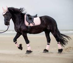 HKM Cavallino Marino Copper Kiss Saddle Cloths Rose Mocha White Anthracite IS 2