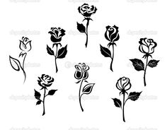 depositphotos_13383507-Beautiful-roses-set.jpg (1023×800)