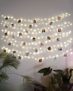 Es nuestra combinación favorita 😍 Miami es un set de 100 fotos para pegar en la pared y darle un estilo único a tu habitación. Hemos pensado que si lo combinas con campanilla que es nuestra guirnalda de luces led de 20 metros la combinación será brutal 🤪 Army Room, Luz Led, Photo Wall, Frame, Home Decor, Bedroom, Paper, Wall Photos, Decorate Walls