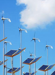 Cities help drive renewable energy push through solar   Plymouth Rock Energy