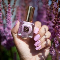 Estee Lauder Lilac Leather и Kbshimmer Berry Patch