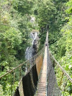 Los Campesinos Reserve - Quepos (waterfalls, jungle, hanging bridges)