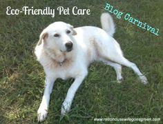 eco-friendly pet care