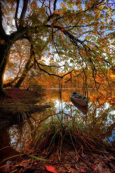 Autumn in Kilkenny, Ireland