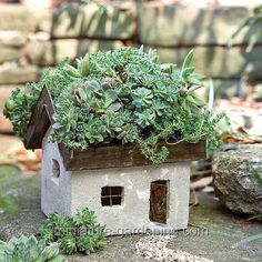 Tabby Cottage - the roof can be planted with sedum & other succulents, flowering herbs, mosses or other plants with shallow roots. For a quick & easy green roof use preserved moss such as Mood, Reindeer, &/or Forest Moss. The metal roof has drainage holes and is detachable.  ...Twinkle Lights, placed inside the cottage, create an evening glow....   $45