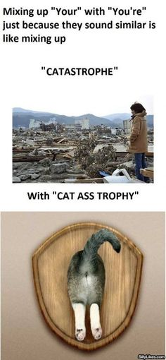 """Cat Ass Trophy. . Mixing up """"Tour"""" with """"You' re"""" just because they sound similar is like mixing up with """"CAT GSI, TROPHY"""". Made me blow out..."""