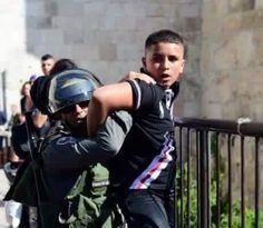 di Giovanni Sorbello Quattro detenuti palestinesi in sciopero della fame sono in…