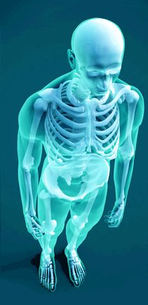 Web-based radiology PACS system for digital medical imaging from Hosted PACS Solutions.