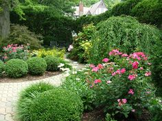 Image result for perennial gardens