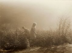 Leonard Misonne – was a Belgian photographer. Misonne was a master pictorialist photographer, whose atmospheric landscapes and street scenes ar. Old Photos, Vintage Photos, Berry Picking, Old Photography, Gothic Photography, Somewhere In Time, Portraits, Black And White Photography, Cinematography