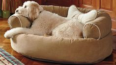 frontgate.com - Comfy Couch Pet Bed